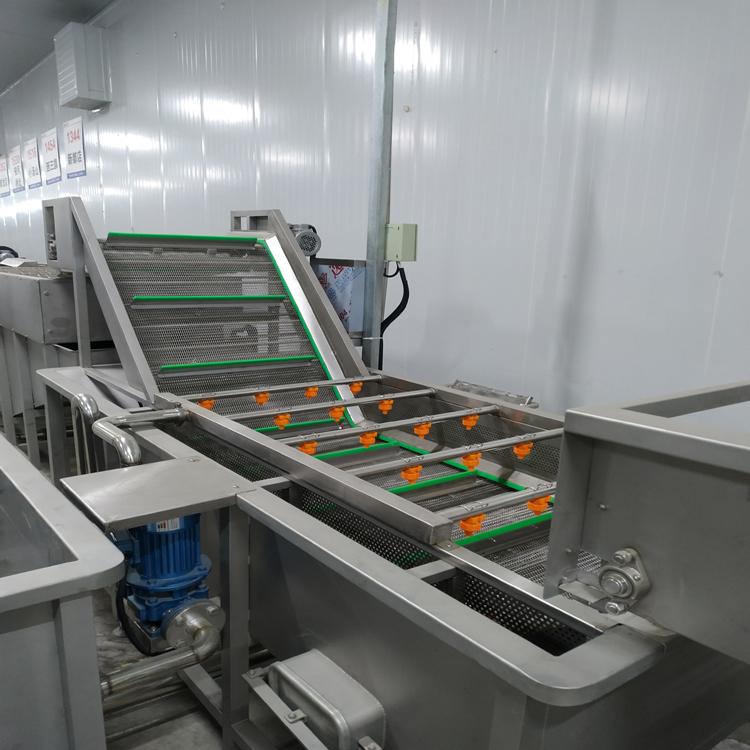 诚达蔬菜气泡清洗机 玉米清洗机 土豆清洗机器设备